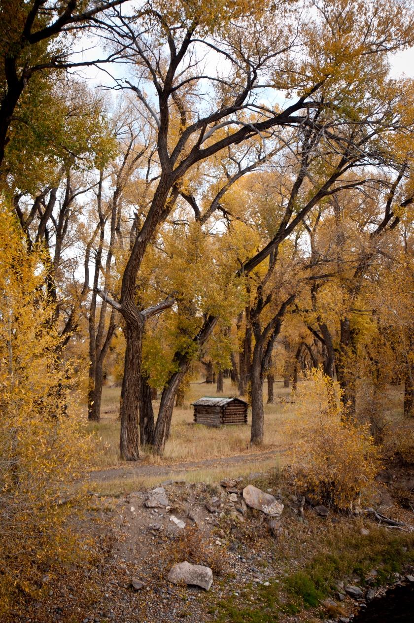 DavisA_Colorado-39