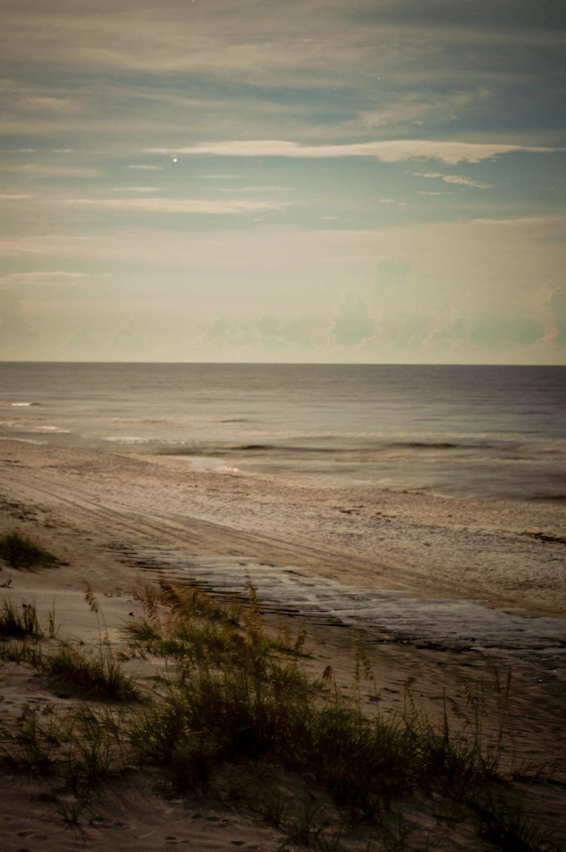 DavisA_FL_Landscapes-1