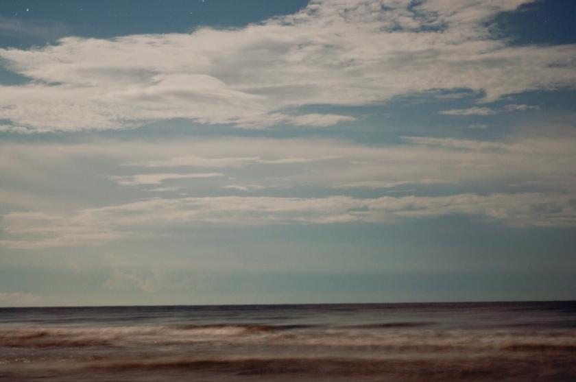 DavisA_FL_Landscapes-10