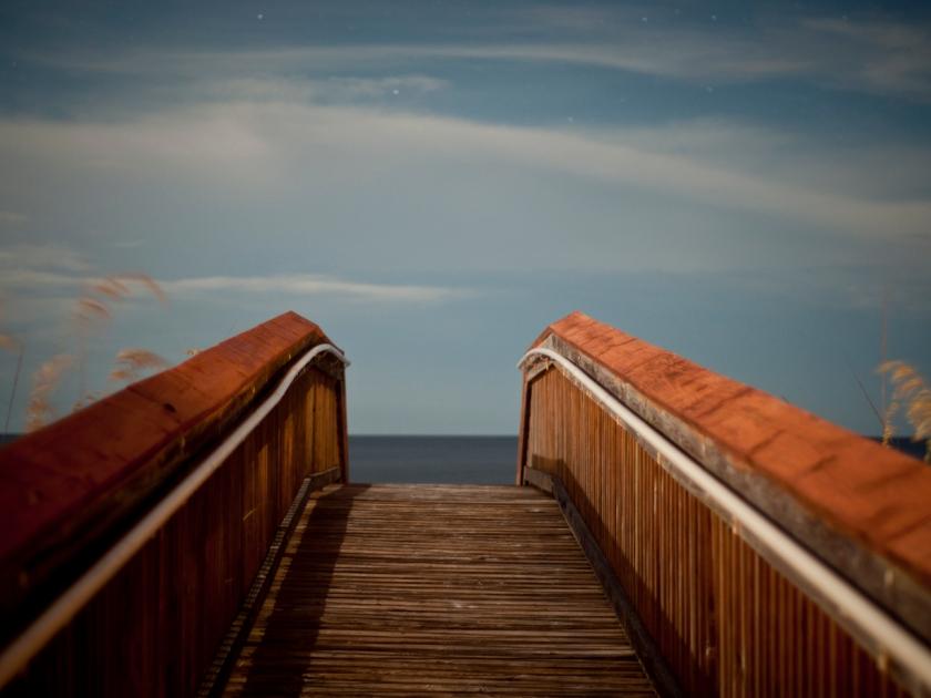 DavisA_FL_Landscapes-11
