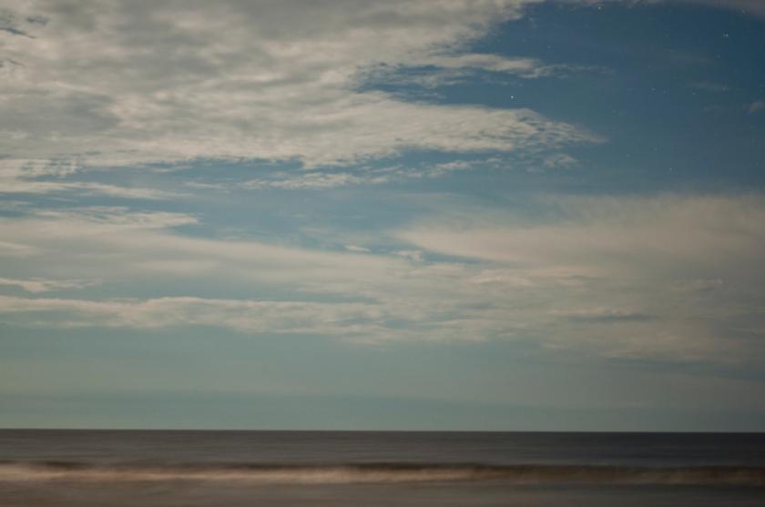 DavisA_FL_Landscapes-6