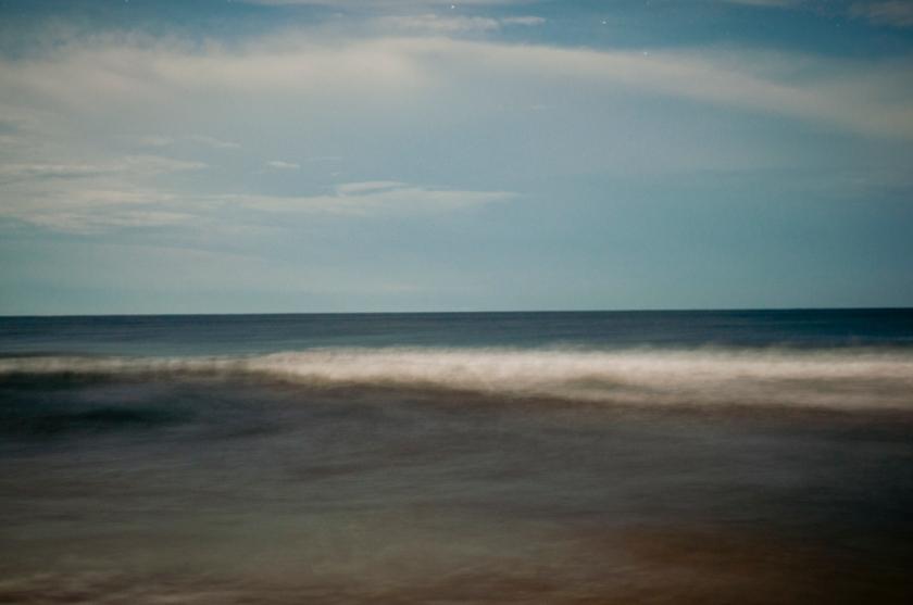 DavisA_FL_Landscapes-9